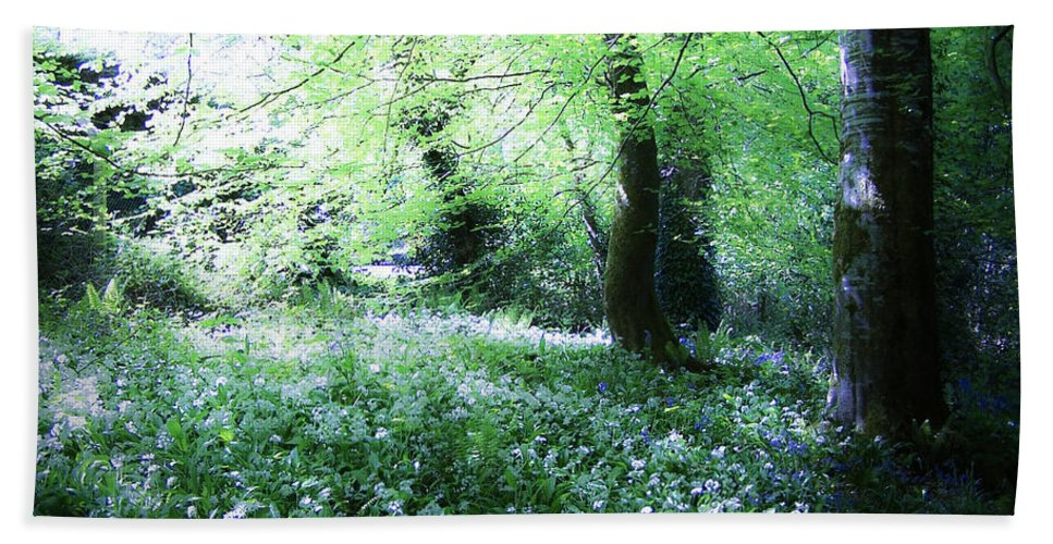 Irish Bath Towel featuring the photograph Magical Forest At Blarney Castle Ireland by Teresa Mucha