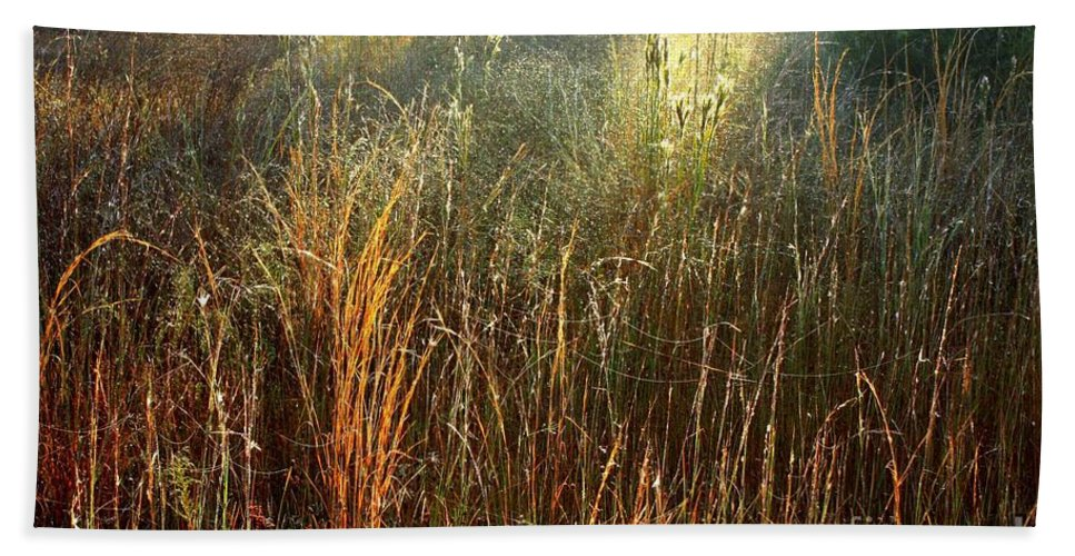 Landscape Hand Towel featuring the photograph Magical Light On The Marsh by Carol Groenen