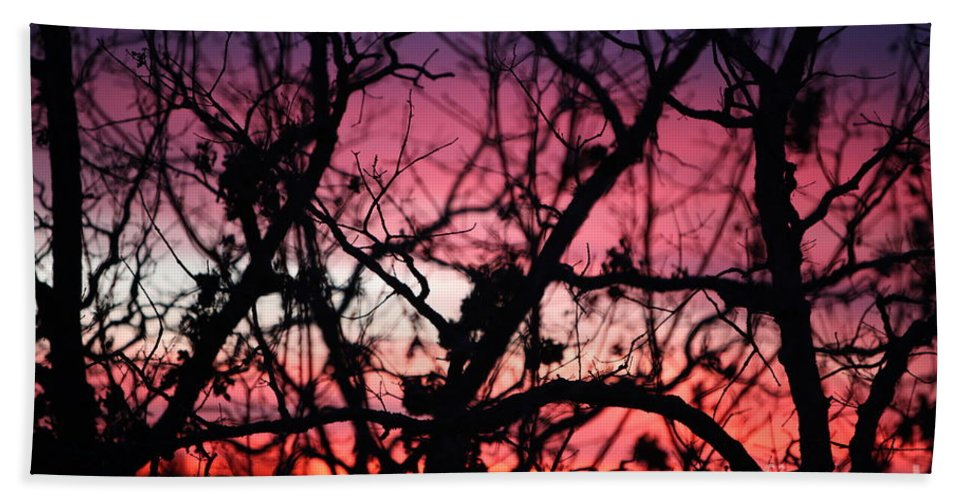 Sunset Bath Towel featuring the photograph Magnificent Sunset And Trees by Nadine Rippelmeyer
