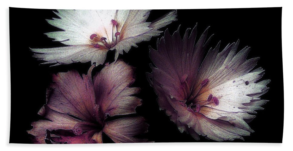 Dianthus Bath Towel featuring the painting Maiden Mother Crone by RC deWinter