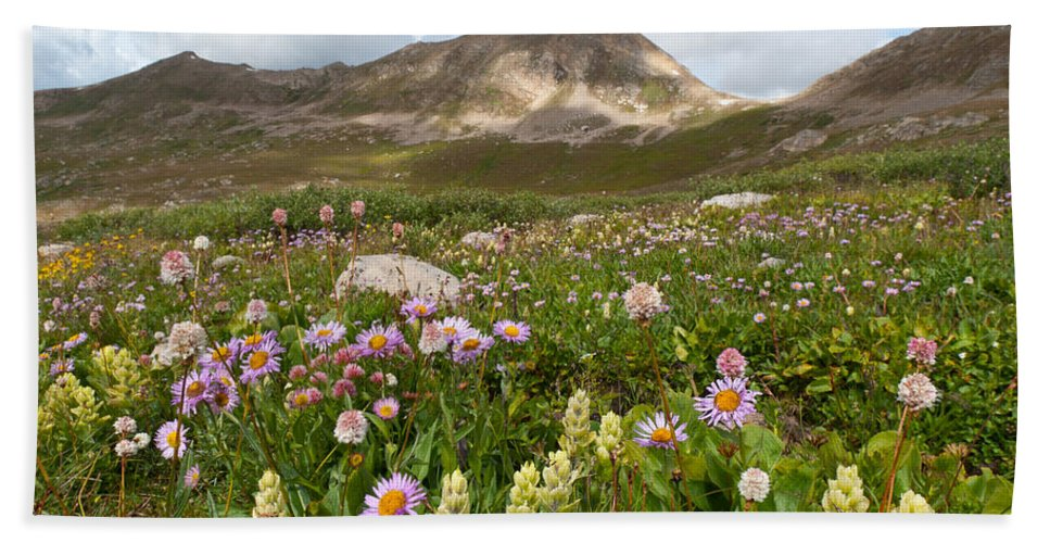 Summer Hand Towel featuring the photograph Majestic Colorado Alpine Meadow by Cascade Colors