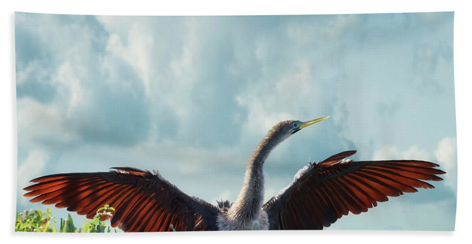 Anhinga Hand Towel featuring the digital art Male American Anhinga by Svetlana Foote