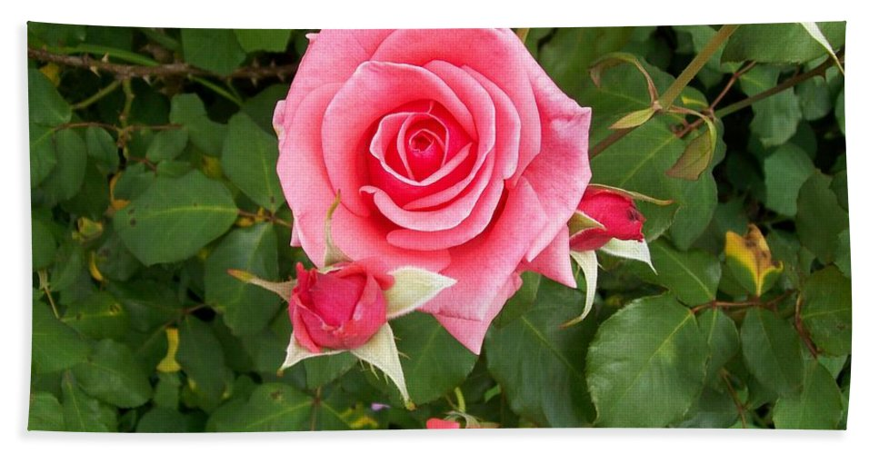 Rose Bath Sheet featuring the photograph Mama by Laurette Escobar