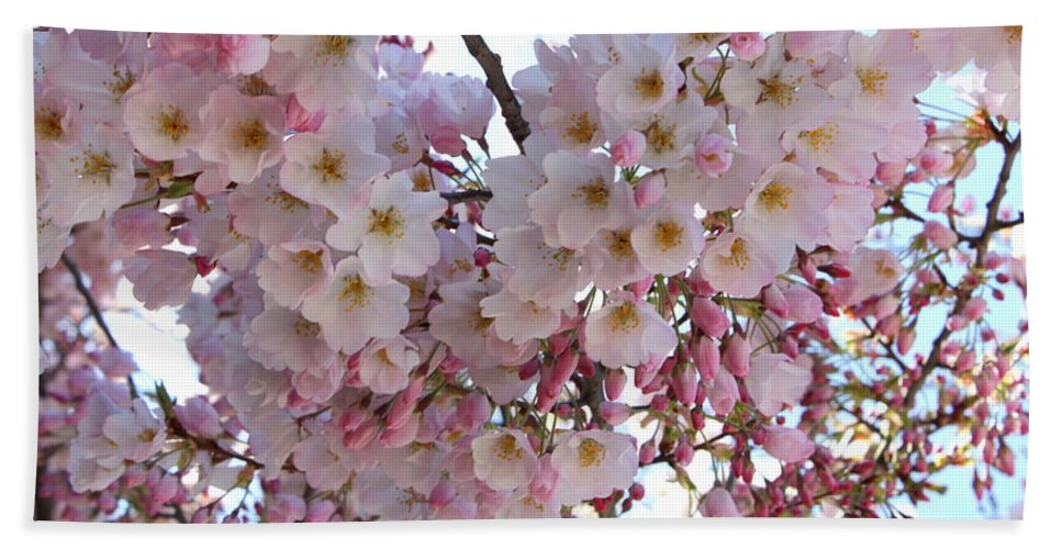 Pink Blossoms Bath Sheet featuring the photograph Many Pink Blossoms by Carol Groenen