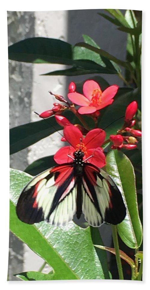 Butterfly Bath Towel featuring the photograph Marisposa by Hella Buchheim