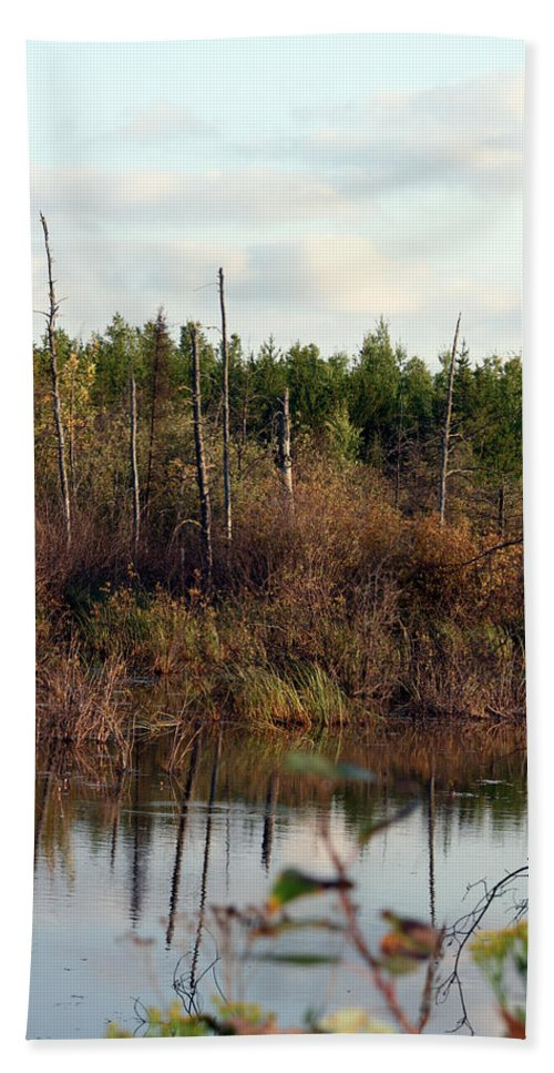 Marsh Lake Water Aquatic Wild Natural Mother Nature Pond Hand Towel featuring the photograph Marsh by Andrea Lawrence