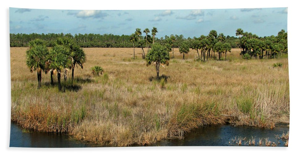 Nature Bath Sheet featuring the photograph Marshland by Peg Urban