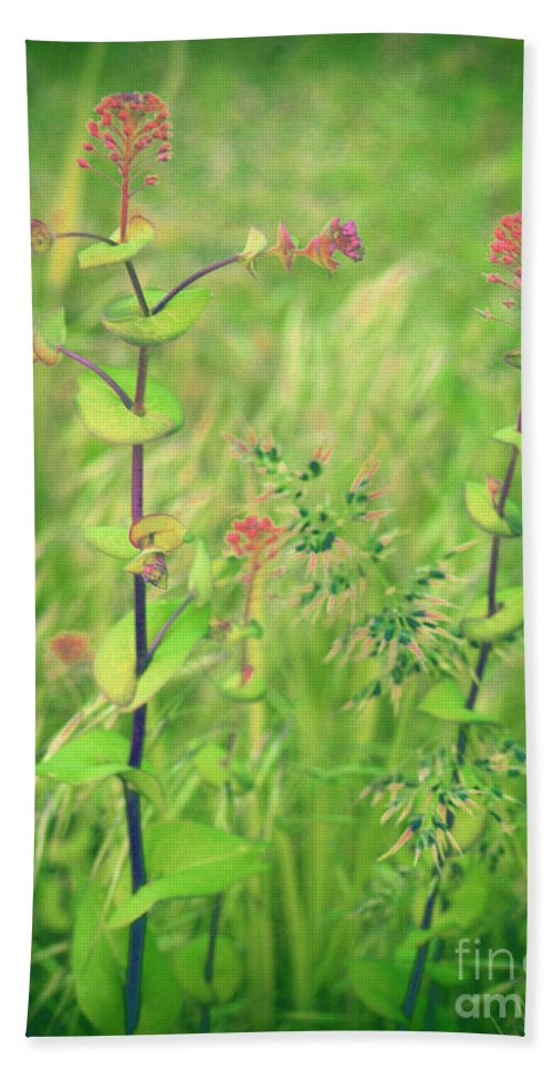 Grass Hand Towel featuring the photograph May 13 2010 by Tara Turner