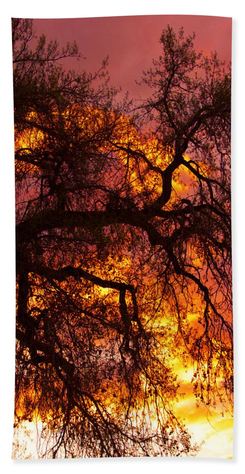 Sunset Hand Towel featuring the photograph May One Sunset by James BO Insogna