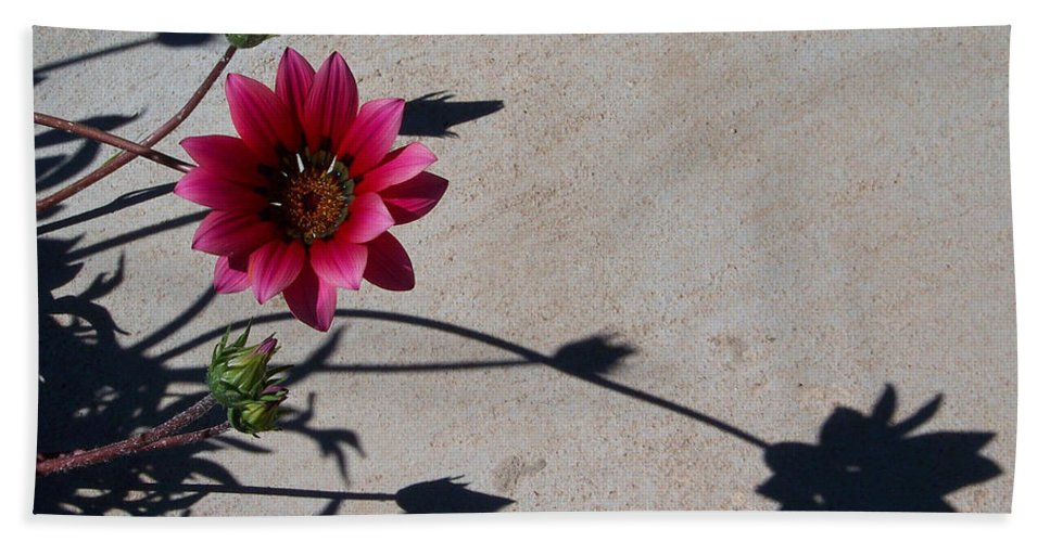 Flowers Bath Towel featuring the photograph Me And My Shadow by Kathy McClure
