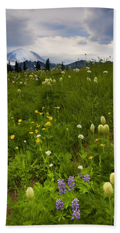 Rainier Bath Towel featuring the photograph Meadow Beneath The Storm by Mike Dawson
