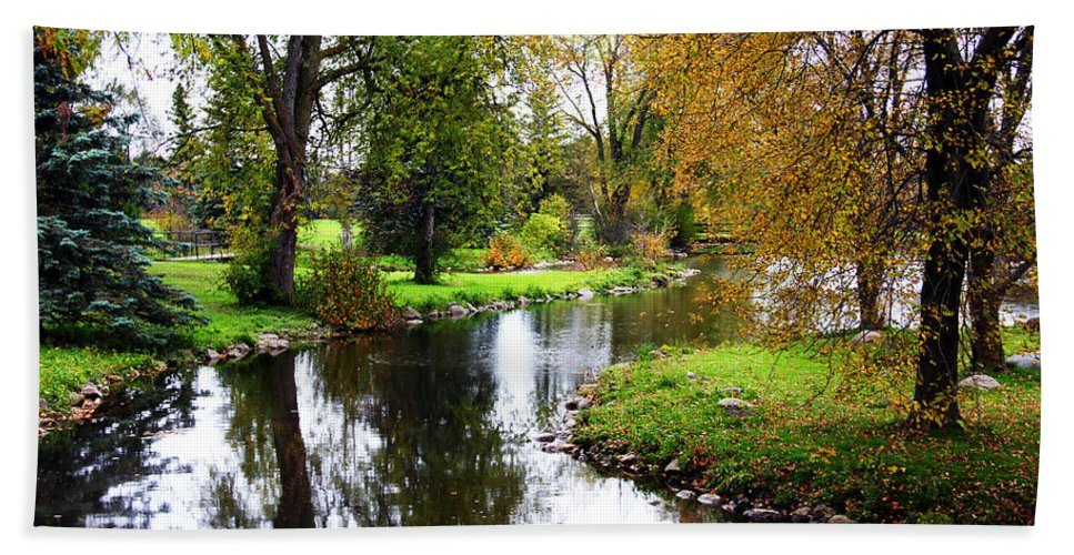 Guelph Hand Towel featuring the photograph Meandering Creek In Autumn by Debbie Oppermann