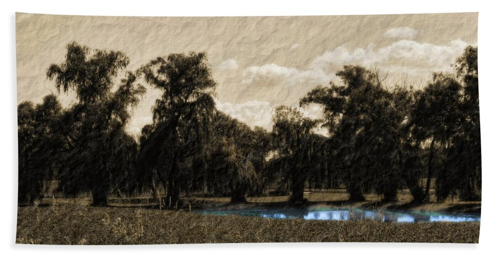 Landscape Bath Sheet featuring the photograph Meet Me By The Willows by Lauren Radke