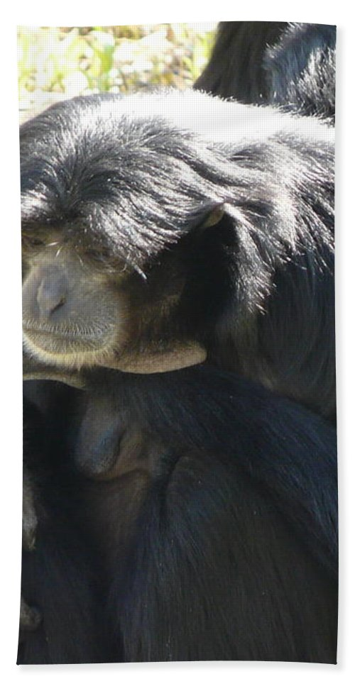 Animal Bath Towel featuring the photograph Melancholy by Valerie Ornstein
