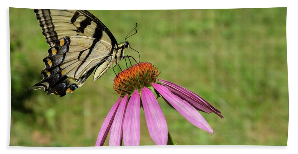 Butterfly Hand Towel featuring the photograph Mellow Yellow by Linda Howes