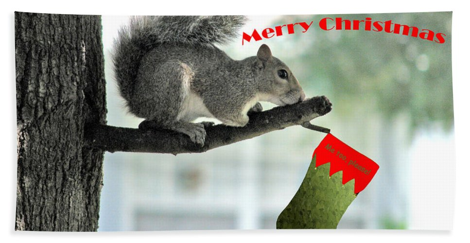 Squirrels Hand Towel featuring the photograph Merry Christmas To All by Adele Moscaritolo