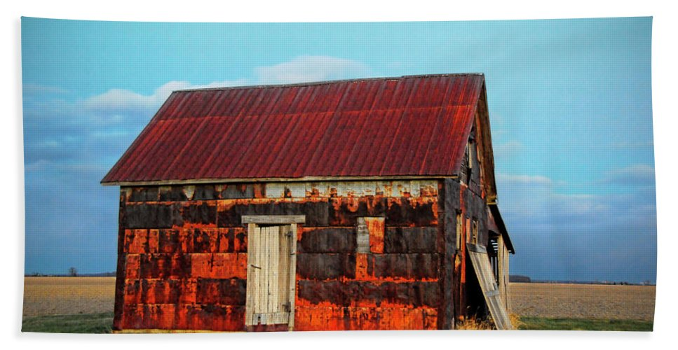 House Bath Sheet featuring the photograph Metal House by David Arment