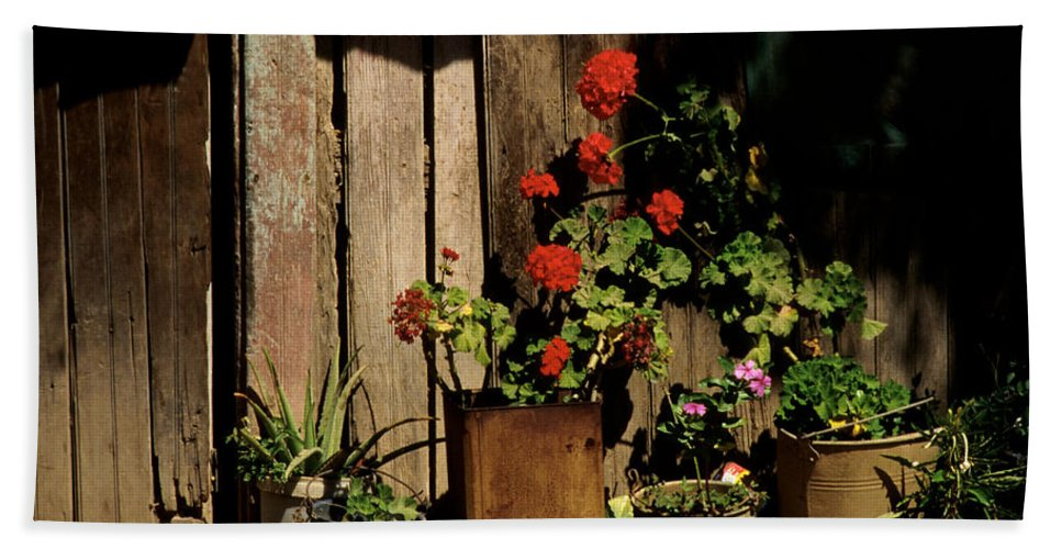 Flowers Bath Sheet featuring the photograph Mexican Geraniums by Jerry McElroy