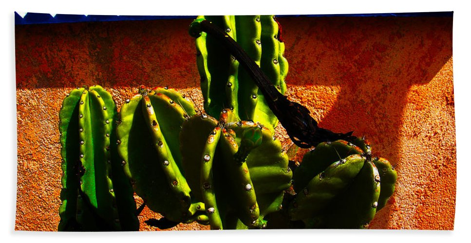 Mexico Bath Sheet featuring the photograph Mexican Style by Susanne Van Hulst