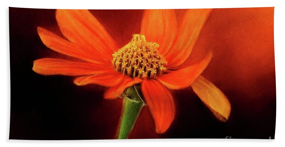Warrena J. Barnerd Hand Towel featuring the photograph Mexican Sunflower by Warrena J Barnerd