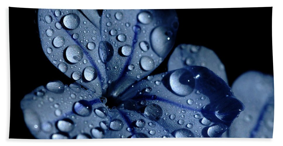 Blue Bath Sheet featuring the photograph Midnight Dew by Donna Blackhall