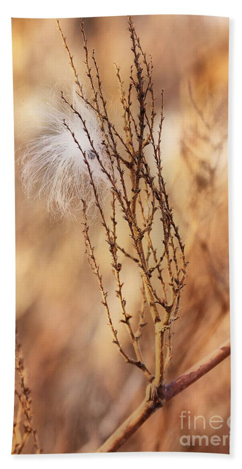 Milkweed Hand Towel featuring the photograph Milkweed In The Breeze by Deborah Benoit