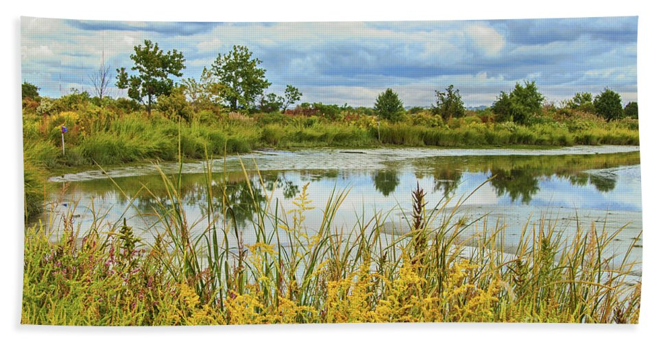 Mill Creek Marsh Bath Sheet featuring the photograph Mill Creek Marsh by Regina Geoghan