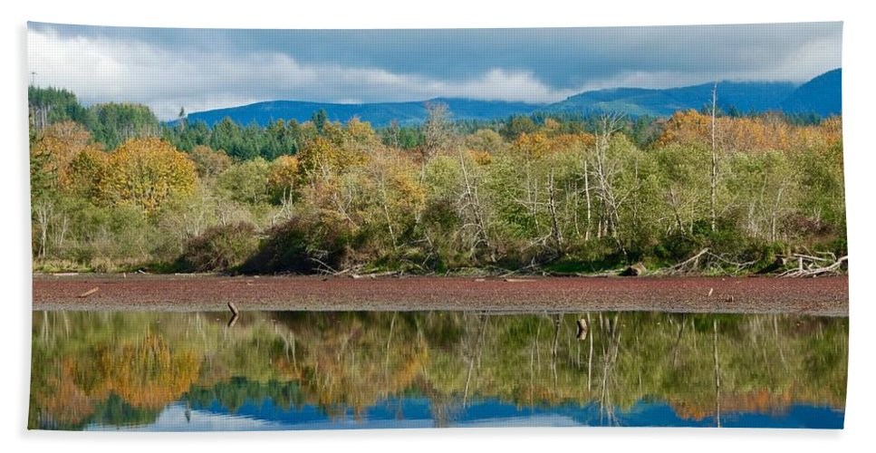 Mirror-image Bath Sheet featuring the photograph Mill Pond Illusion by David Coleman