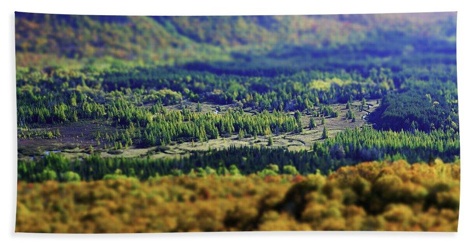 Adirondacks Hand Towel featuring the photograph Mini Meadow by Brad Wenskoski