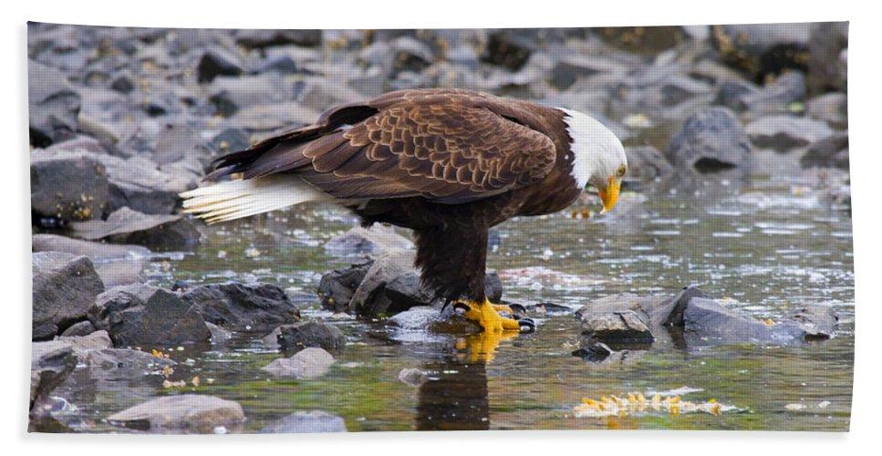 Eagle Bath Sheet featuring the photograph Mirror Mirror by Mike Dawson
