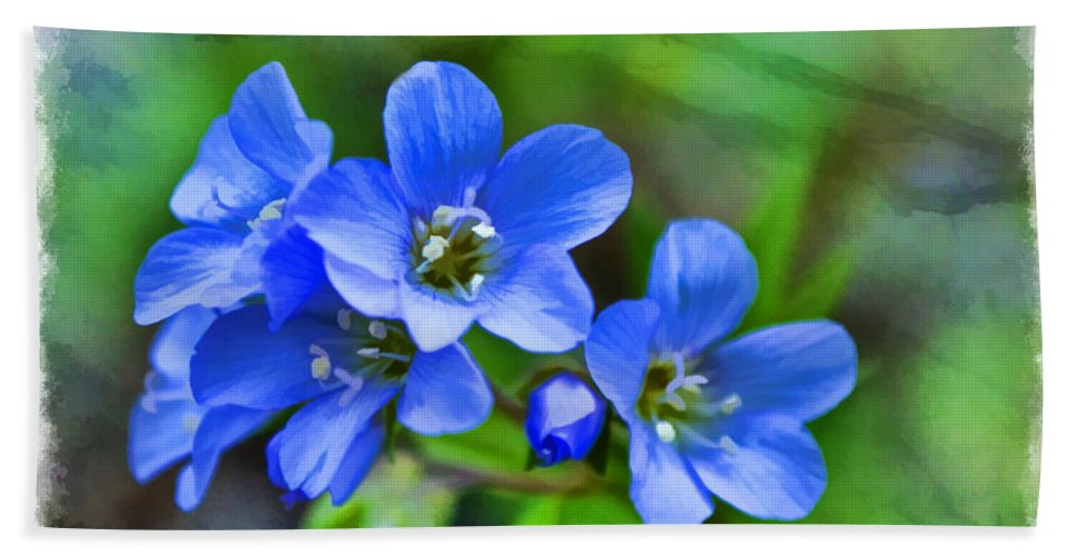 Tiny Hand Towel featuring the photograph Missouri Wildflowers 5 - Polemonium Reptans - Digital Paint 1 by Debbie Portwood