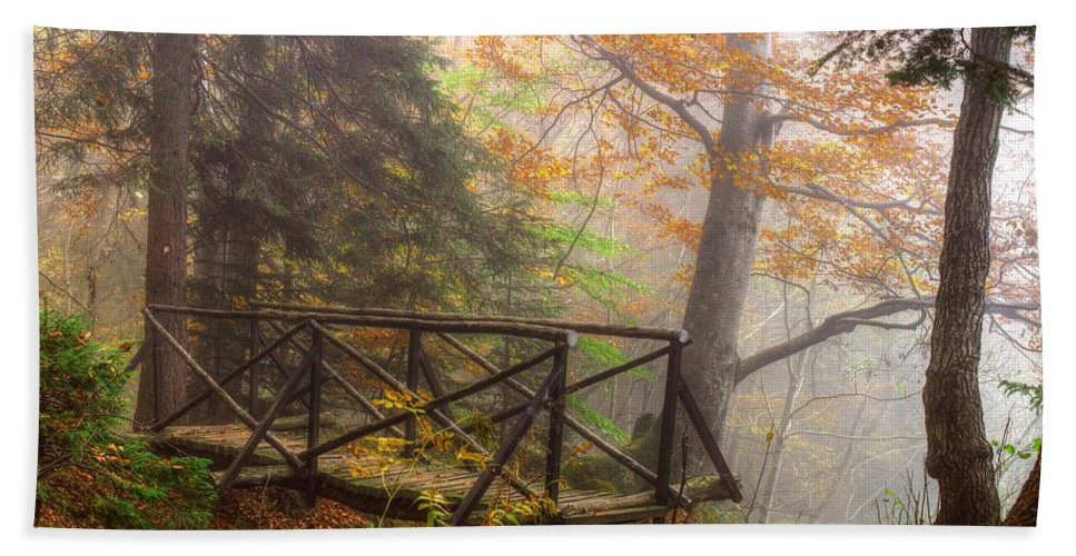 Autumn Hand Towel featuring the photograph Misty Forest by Ivan Slosar
