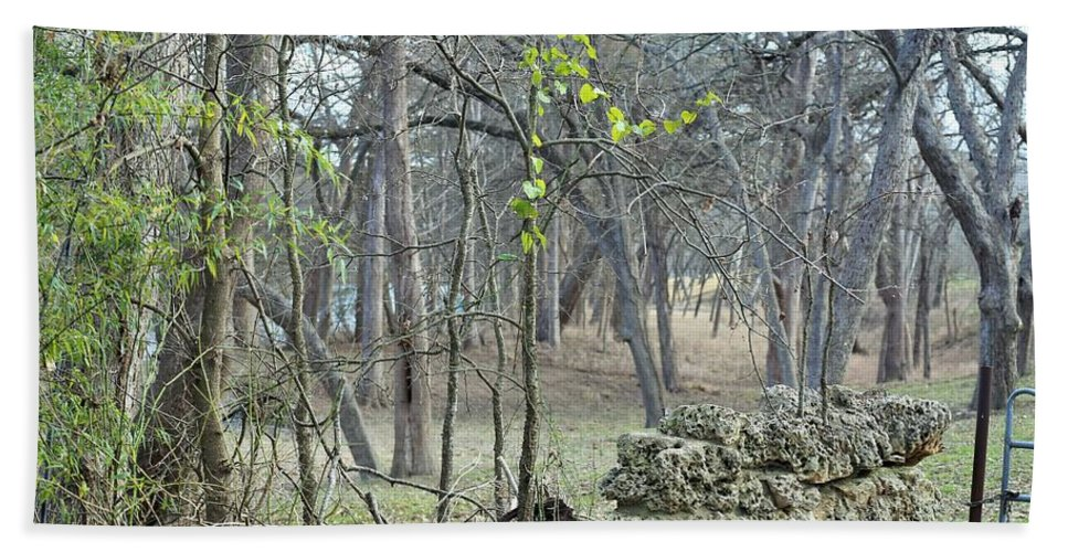 Bath Sheet featuring the photograph Misty Gate by Jeff Downs