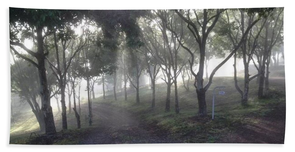 Mist Hand Towel featuring the photograph Misty Mornings by By Divine Light