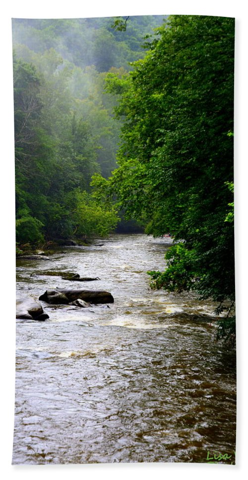 Mcconnells Mill State Park Pa Hand Towel featuring the photograph Misty Morning by Lisa Wooten
