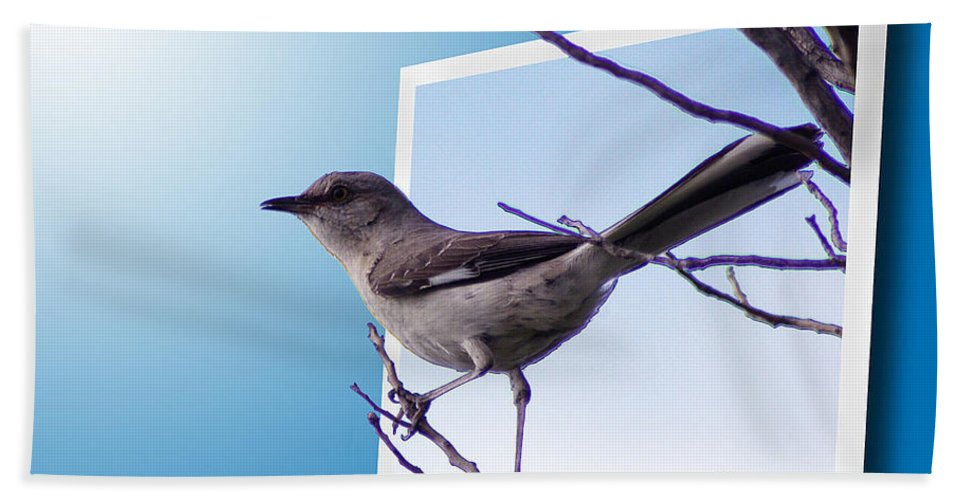 2d Hand Towel featuring the photograph Mockingbird Branch by Brian Wallace