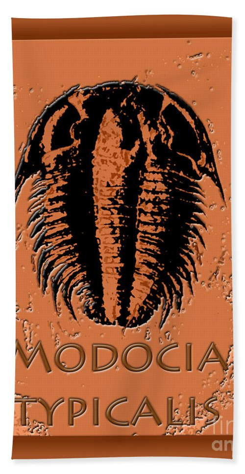 Trilobite Fossil Ancient Colorful Exotic Paleontology Marine Prehistoric Unique Cool Awesome Bath Sheet featuring the photograph Modocia Typicalis Fossil Trilobite by Melissa A Benson