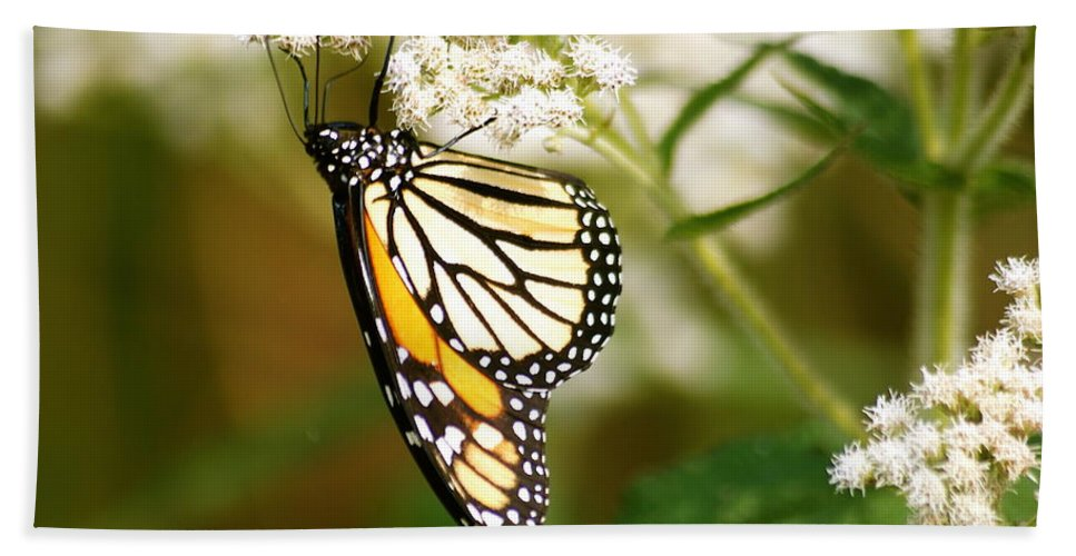 Monarch Bath Sheet featuring the photograph Monarch 2 by Michael Peychich