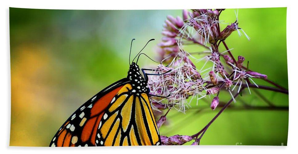 Monarch Bath Sheet featuring the photograph Monarch by Lois Bryan