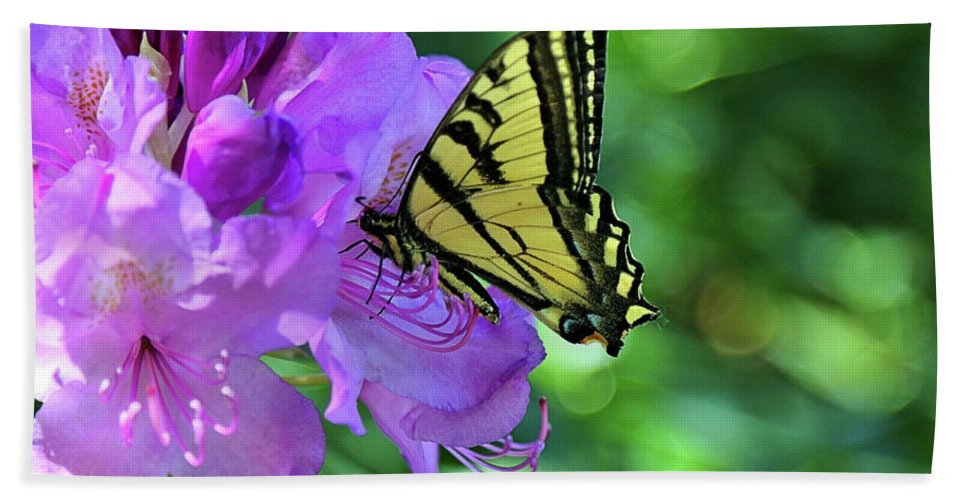 Pink Flower With Monarch Bath Sheet featuring the photograph Monarch by Rosalyn Zacha