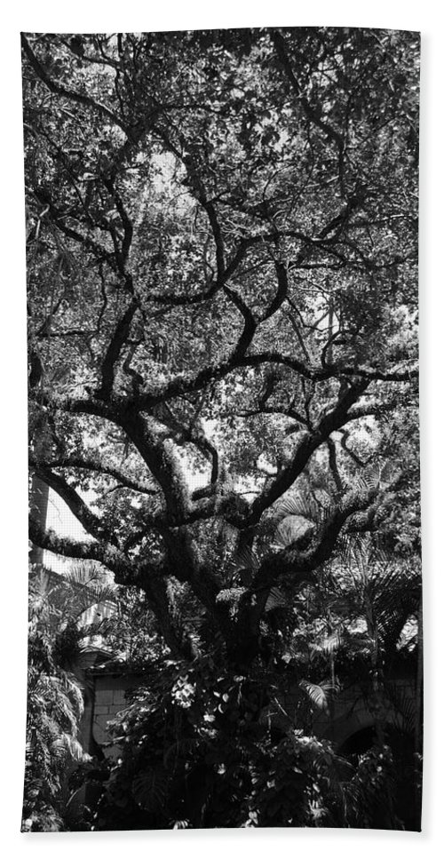 Black And White Bath Sheet featuring the photograph Monastery Tree by Rob Hans