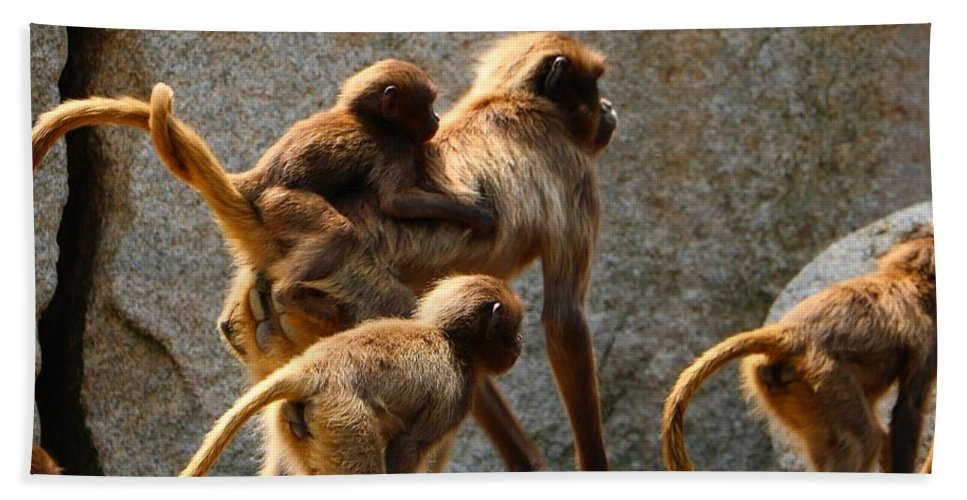 Animal Hand Towel featuring the photograph Monkey Family by Dennis Maier