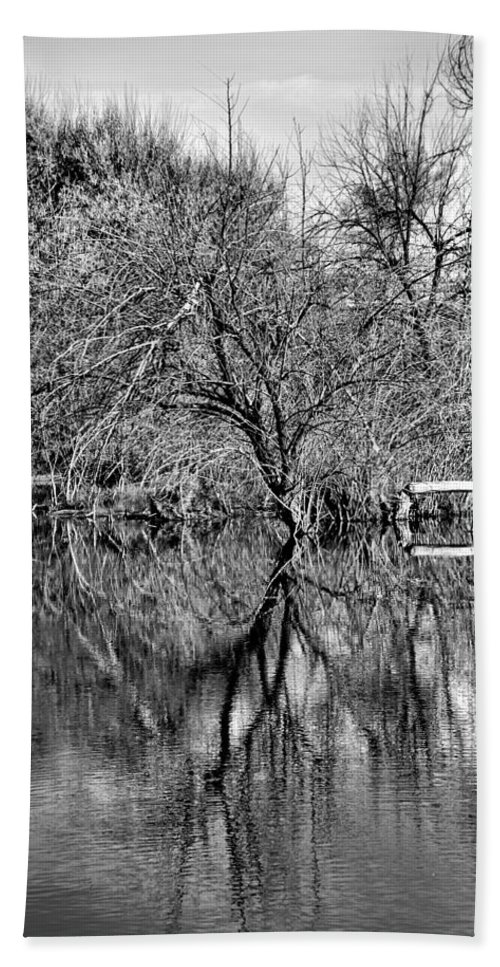 Monochrome Bath Sheet featuring the photograph Monochrome Autumn Reflections by Robert Meyers-Lussier