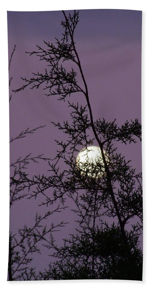 Mary Deal Hand Towel featuring the photograph Moon Trees by Mary Deal