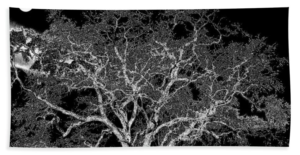 Photo Design Hand Towel featuring the digital art Moonlit Night by Will Borden
