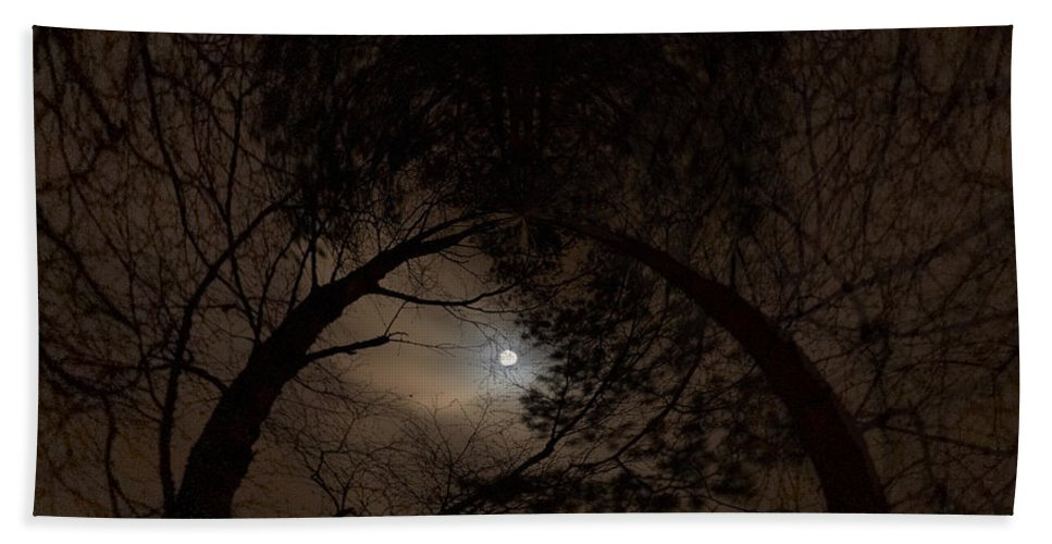 Lehtokukka Hand Towel featuring the photograph Moonshine 14 The Trees by Jouko Lehto