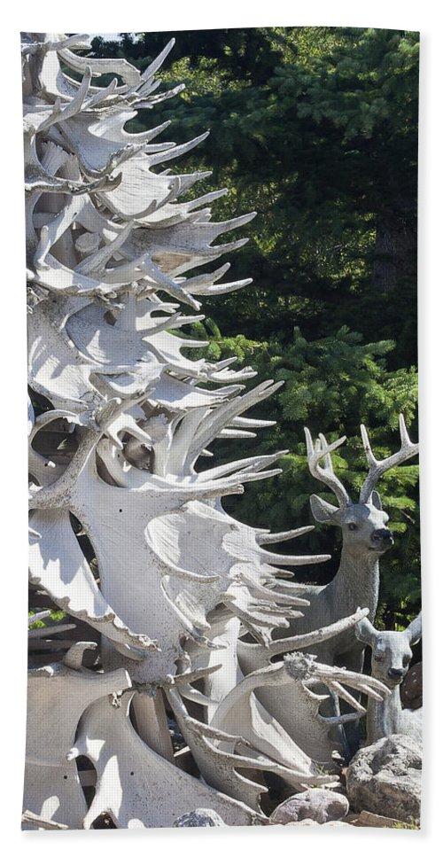 Garden Scene Bath Sheet featuring the photograph Moose Horn Tree by Sandra Foster