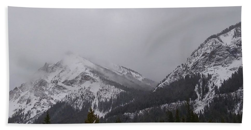 Mountains Hand Towel featuring the photograph Moose Meadows by Ladibug Love