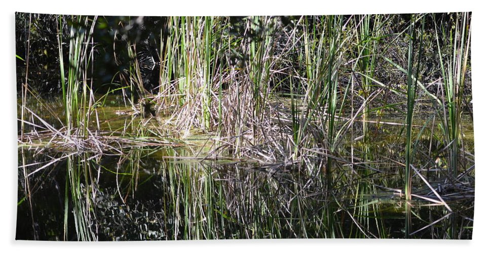 Florida Everglades National Park Hand Towel featuring the photograph More Marsh by Tammy Mutka
