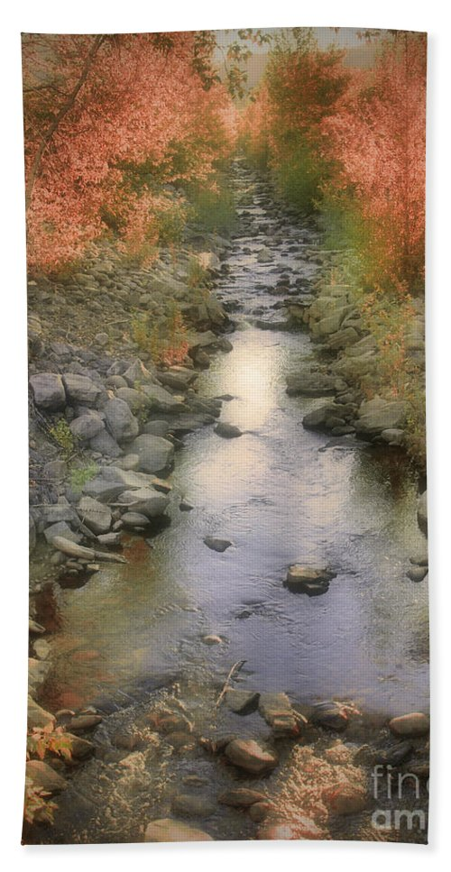 Creek Bath Sheet featuring the photograph Morning By The Creek by Tara Turner
